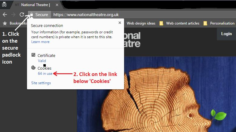 Deleting Cookies in Chrome Part 1