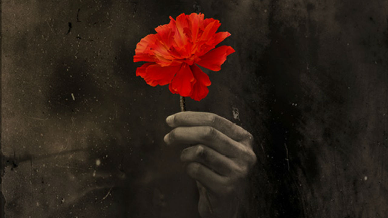 The Hadestown marketing image - a black background with a hand holding a red flower