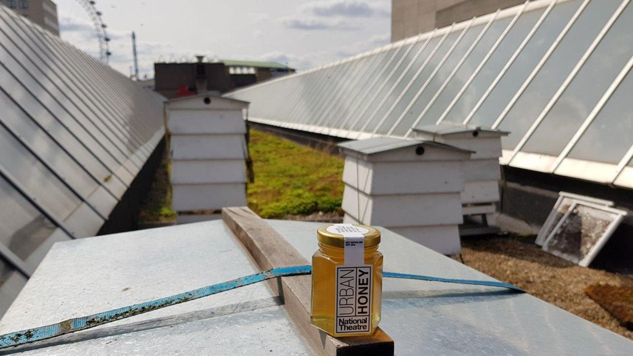 National Theatre rooftop hives and honey jar