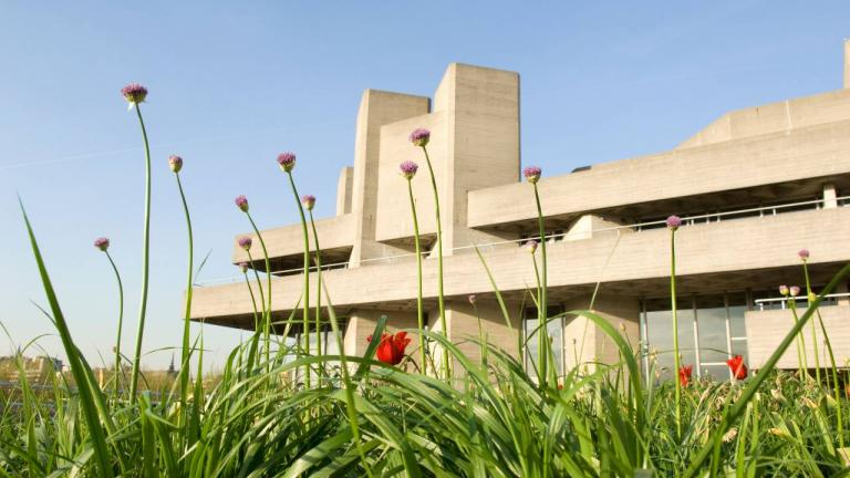 Close up of flowers in front of National Theatre building