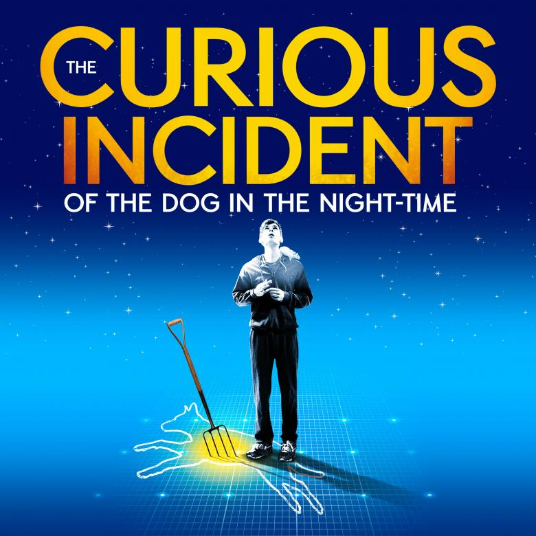 Image result for the curious incident of the dog in the night-time