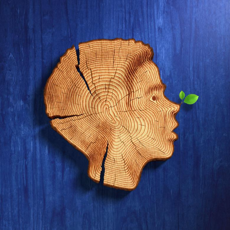 Pinocchio - profile of a young boy as a cross section of a tree trunk