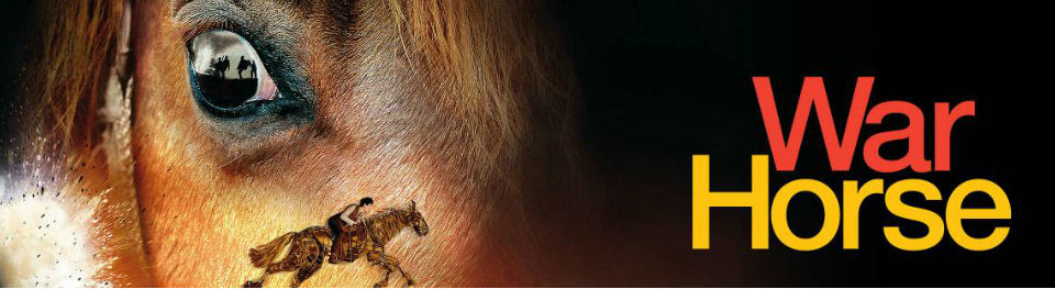 A close up of a brown horse's face, and an image of a person riding a horse